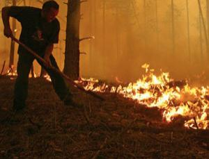 The heatwave in Russia has caused nearly 800 wildfires