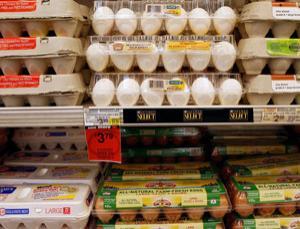 Half a billion eggs in the US are suspect