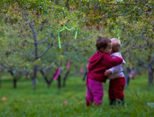 Young children will try to comfort a friend or sibling in distress