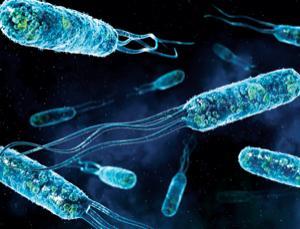 Swim to the nanobot