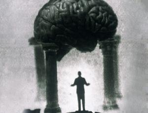 Pillars of intelligence