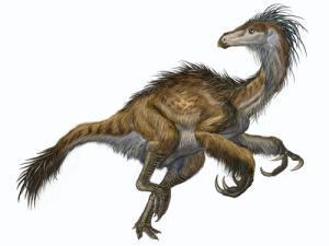 Evidence suggest birds ancestors were the dinosaurs