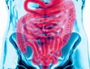Faecal transplants: strange cures