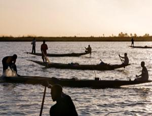 Fish from the inner Niger delta is sold throughout west Africa