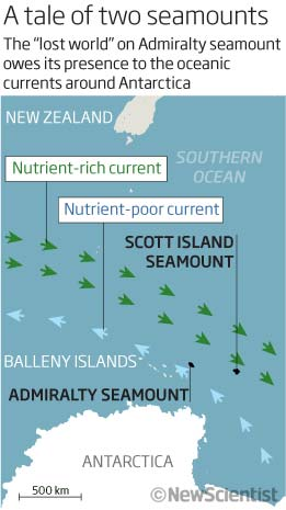 A tale of two seamounts