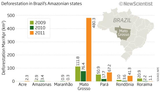 Deforestation in brazil's amazonian states