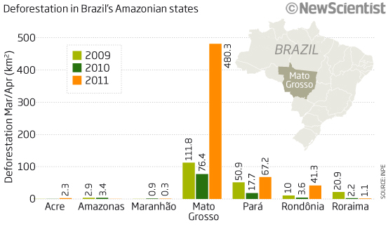 Deforestation spiked this year (Source:INPE)