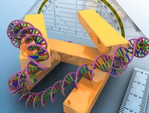 The measure of a molecule