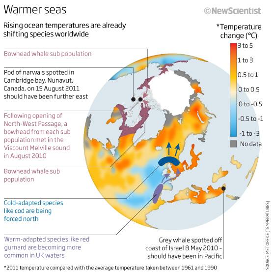 Warmer seas