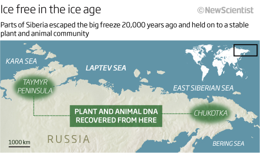 Ice free in the ice age