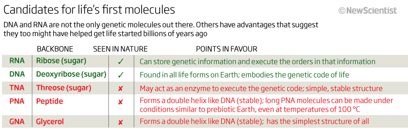 Candidates for life's first molecules