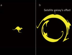 If there was a dark matter galaxy hiding in front of this kangaroo, this is what we would see