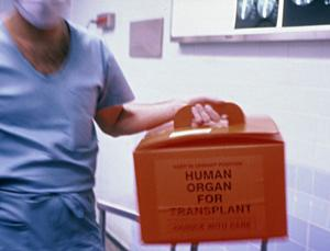 Keep dead people's hearts beating to up organ donation