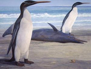 This artist's impression shows what slender Kairuku grebneffi probably looked like, pictured here passing a stranded Waipatia dolphin
