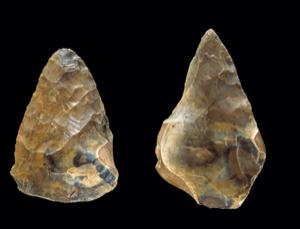 Stone hand axes are a technology that took more than 2 million years to perfect