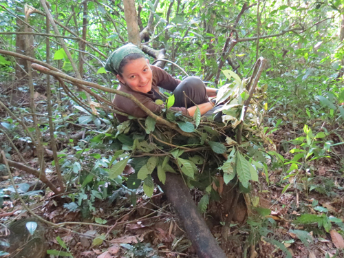 Human apes chimp in ground nest