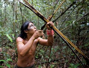 Many of the forests that people occupy are state property and can be sold or leased without consulting the inhabitants