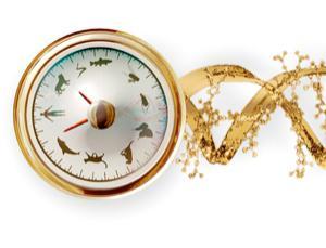 Biological clock began ticking 2.5 billion years ago