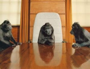 Who you know is more important than what you know when it comes to getting a boardroom seat (Image: Tim Flach/Getty)