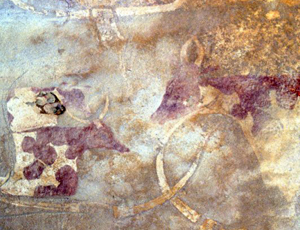 Rock art image of domesticated cattle, between 5000 and 8000 years old, from the Wadi Imha, in the Tadrart Acacus mountains, Libyan Sahara