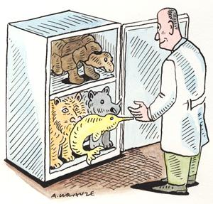 We should have banked Lonesome George's cells
