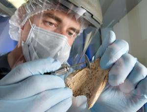 Revealing prehistoric liaisons