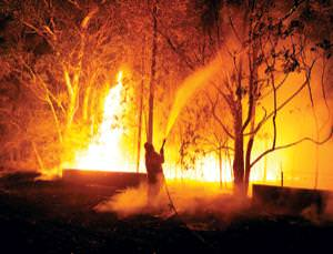 Tinderbox: fire risk in parts of Australia is so high that no homes should be built there