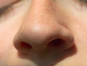 The body: Your nose knows more than you think