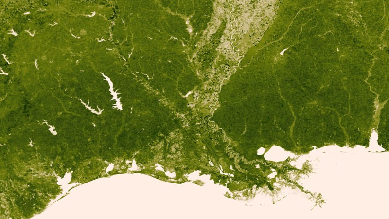 Earth's plant life glows green in hi-res space map