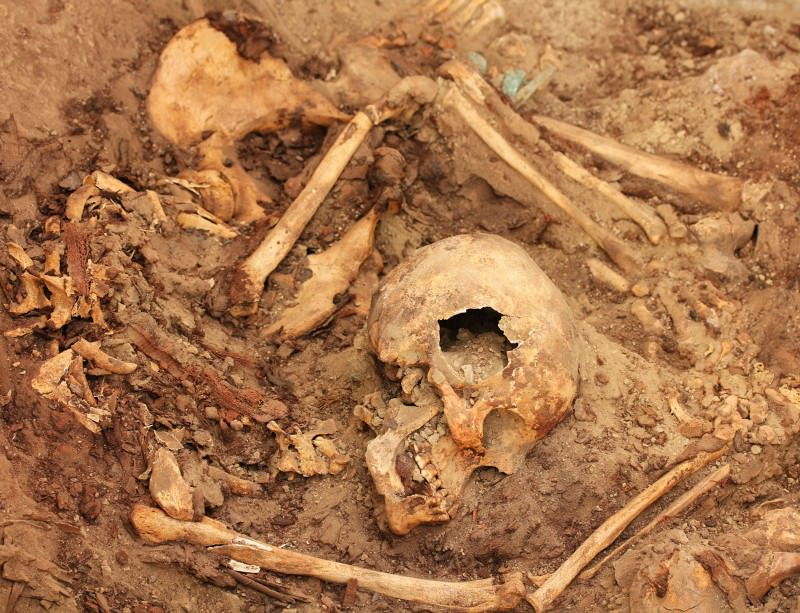 Gold and sacrificed humans found in ancient Wari tomb