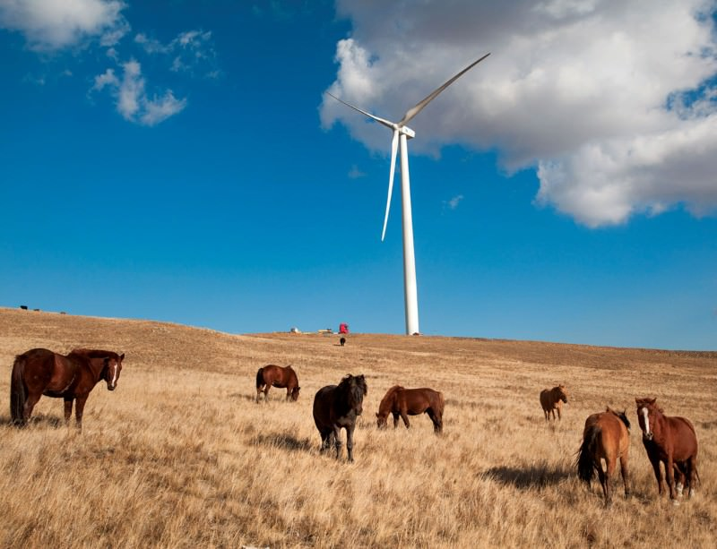 Building Mongolia's first wind farm was no easy task
