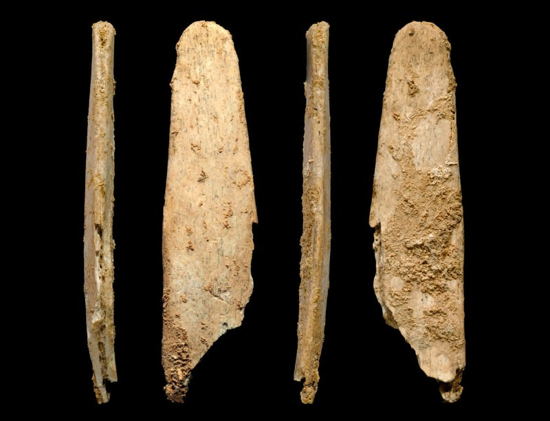 First bone tools suggest Neanderthals taught us skills | New Scientist