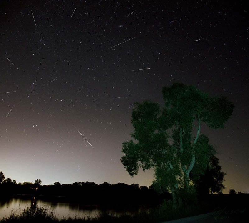 Firework view flaunts Perseid meteors' illusory origin