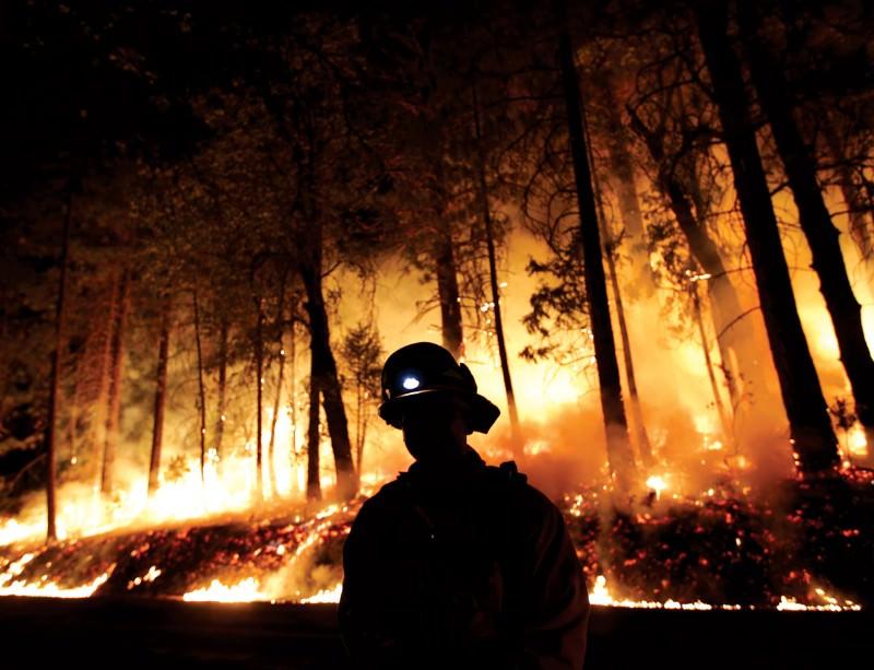 More than 700 square kilometres have burned already