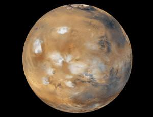 Mars: chemical cradle of Earthly life?