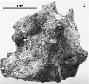 Part of the meteorite found in the Egyptian desert