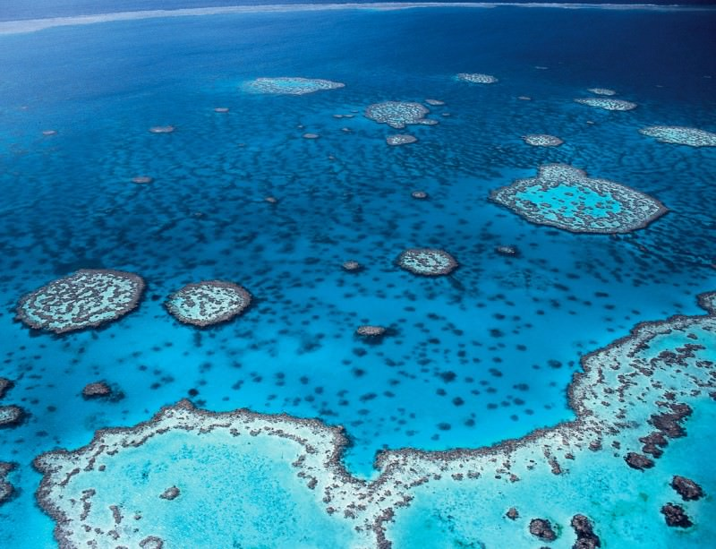 The Great Barrier Reef is a marine protected area of major importance, but some areas may be chosen simply because countries want to meet targets