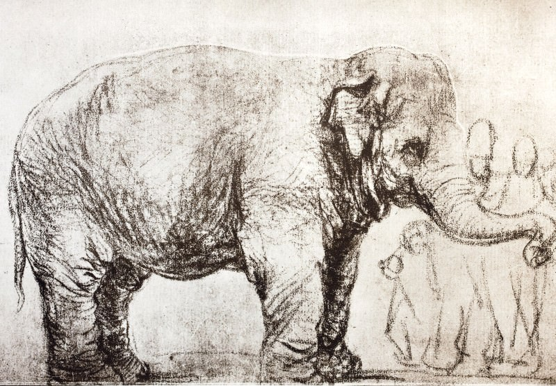 This Rembrandt is science's first Asian elephant
