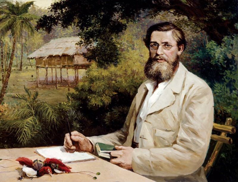 Alfred Russel Wallace: A very rare specimen