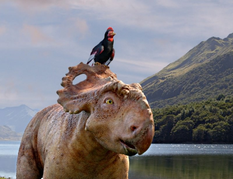 Dream Job: Walking with Dinosaurs movie adviser
