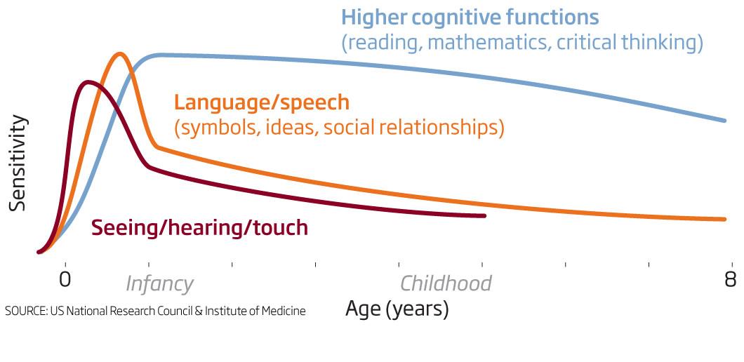 Learning drugs reawaken grown-up brain's inner child