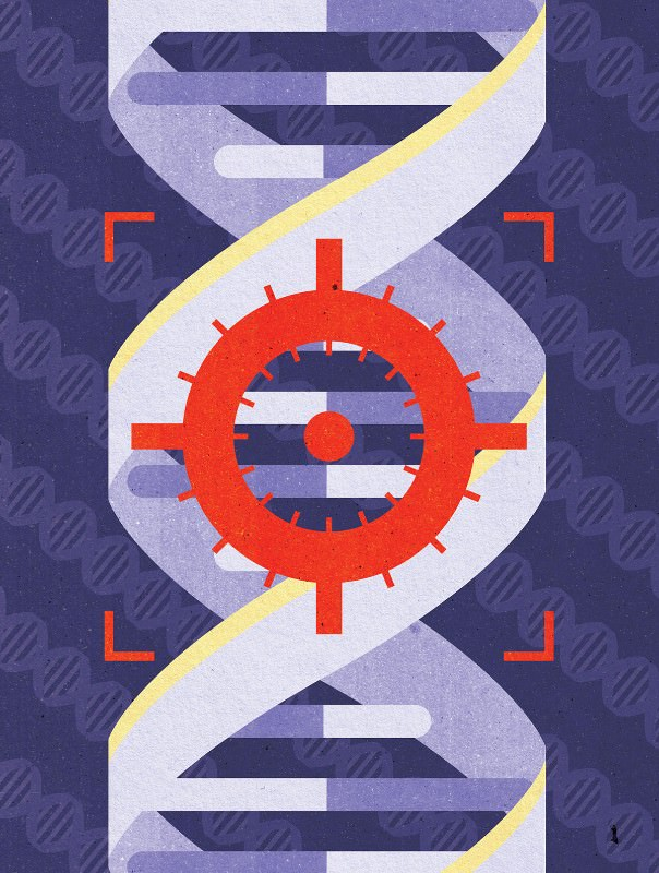 Right on target: New era of fast genetic engineering