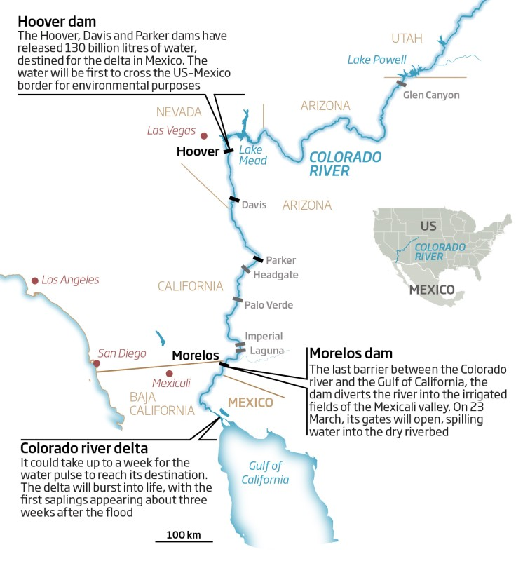 Huge water pulse to bring Colorado river back from dead