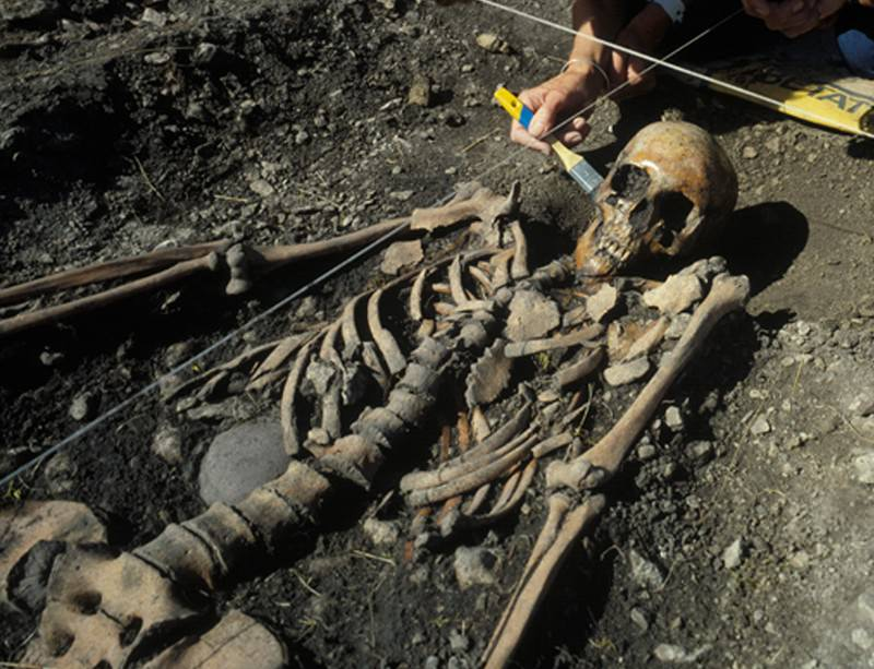 Stone Age Dna Shows Hunter Gatherers Shunned Farming New