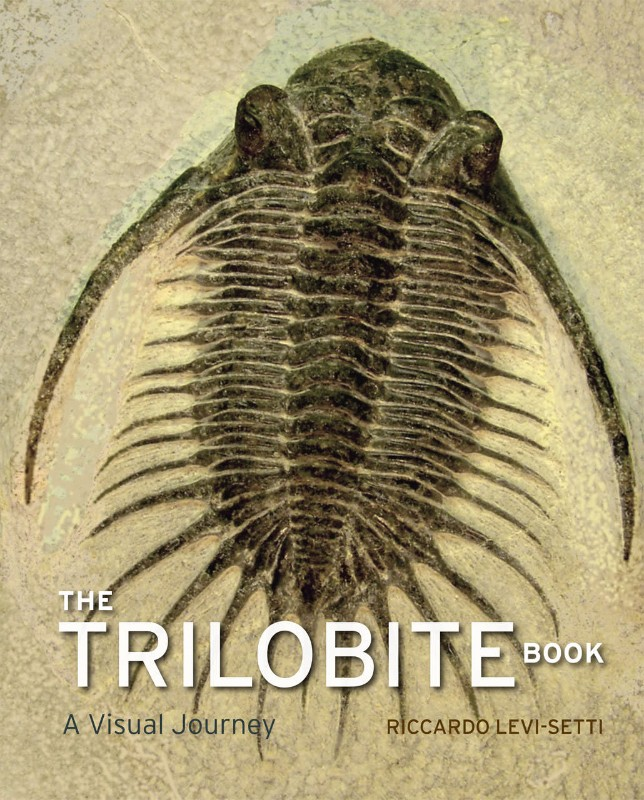 When trilobites ruled the seas
