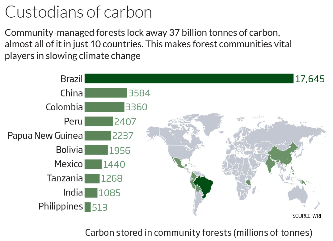 Custodians of carbon