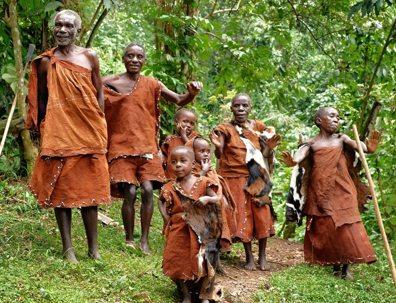Image result for african pygmies