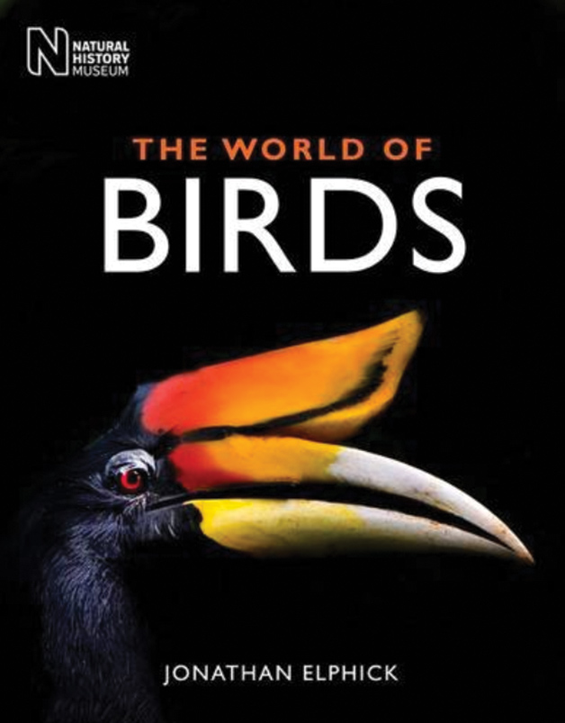 A glorious, comprehensive A to Z of living birds
