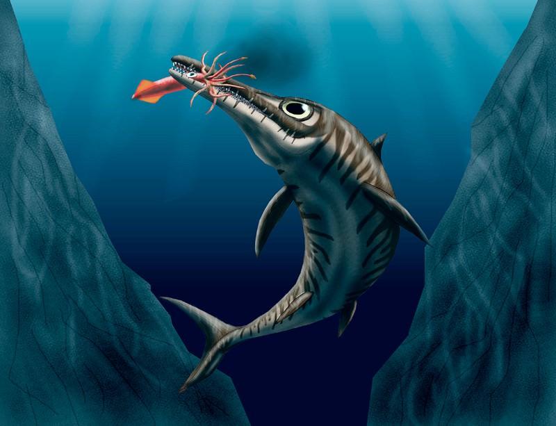 Even predators become food eventually