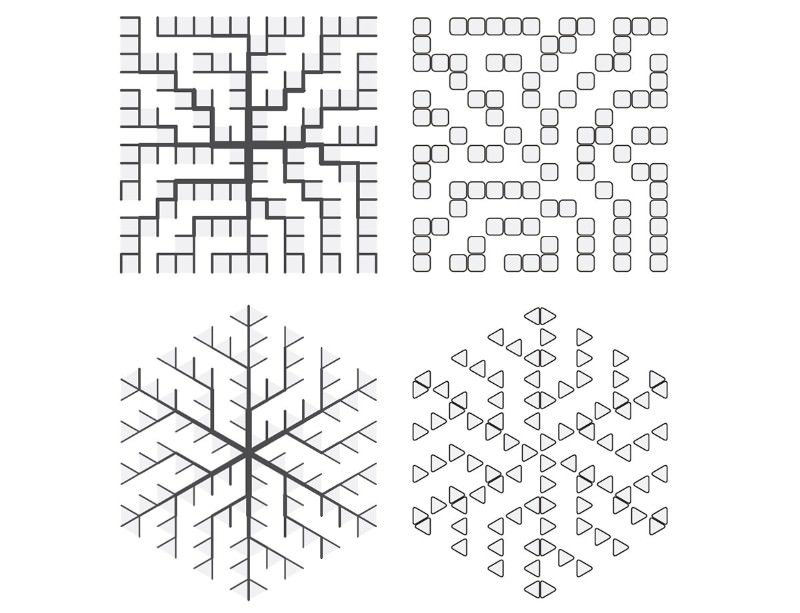 Snowflake-like networks (left) and the loops from which they were built